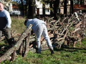 Les le ons du bois le bois du bouscat for Piscine du bouscat
